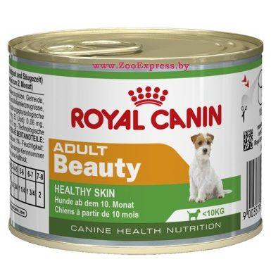 Royal Canin FHN Mother and Babycat 4kg :: Сухой кошачий